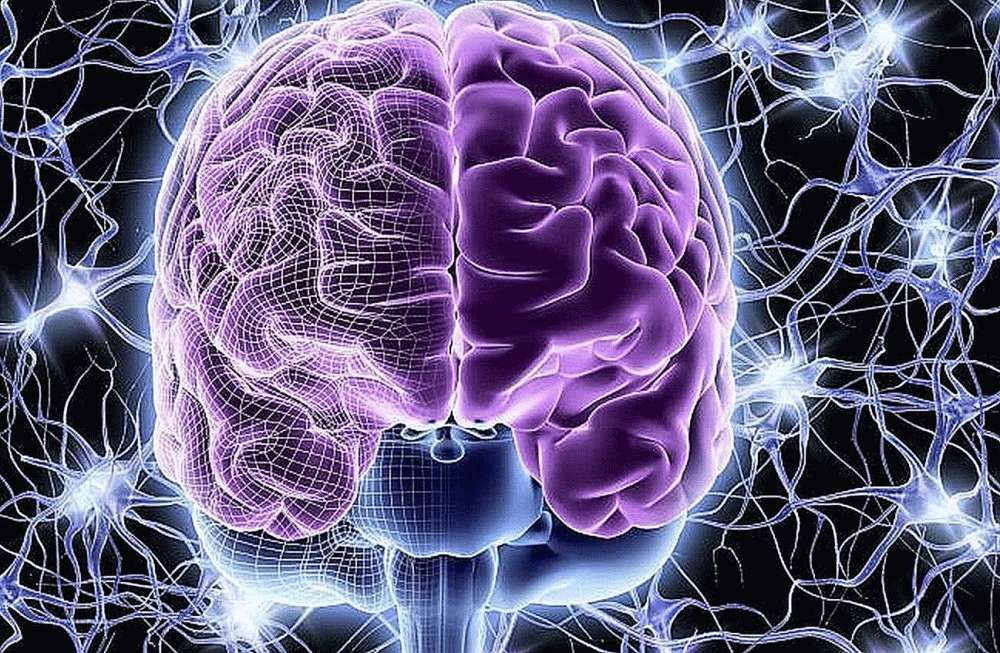 Ускоряет метаболизм мозга