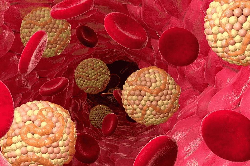 Теветен не приводит к изменению холестерина в крови