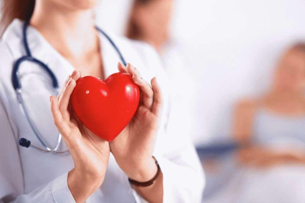 Положительно влияет на работу сердца