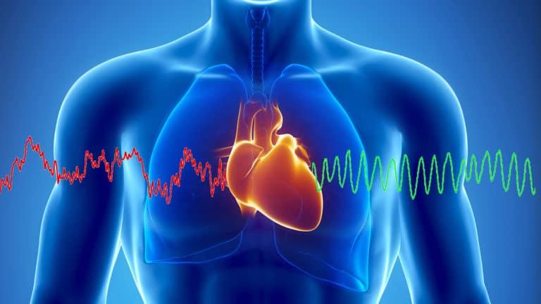 Улучшает функционирование сердечной мышцы