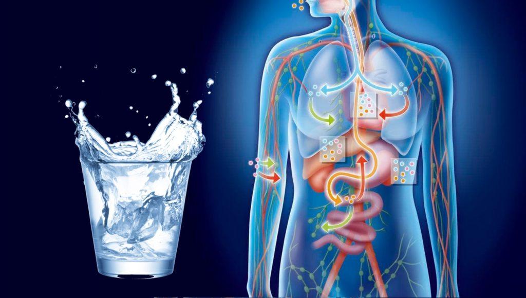 Недостаток поступления жидкости в организм