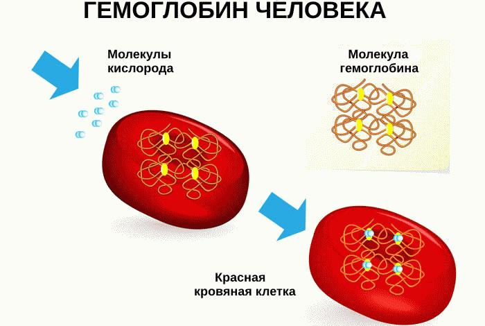 Понижение уровня гемоглобина