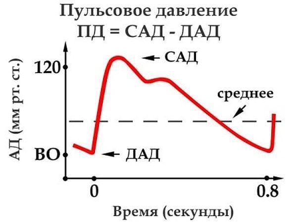 Изображение - Давление 160 на 80 у женщины pulsovoe-2