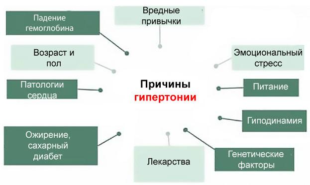 Развития гипертонии