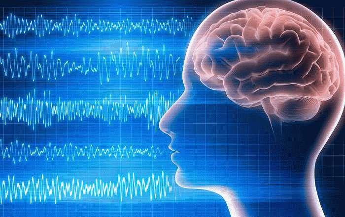 Биоэлектрическую активность головного мозга