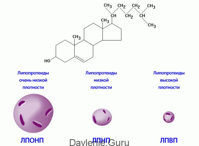 Аполипопротеина А-1 и ЛПВП-холестерина