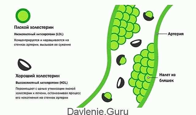 Низкоплотный липопротеин