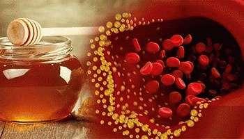 Можно ли есть мед при высоком холестерине в крови?
