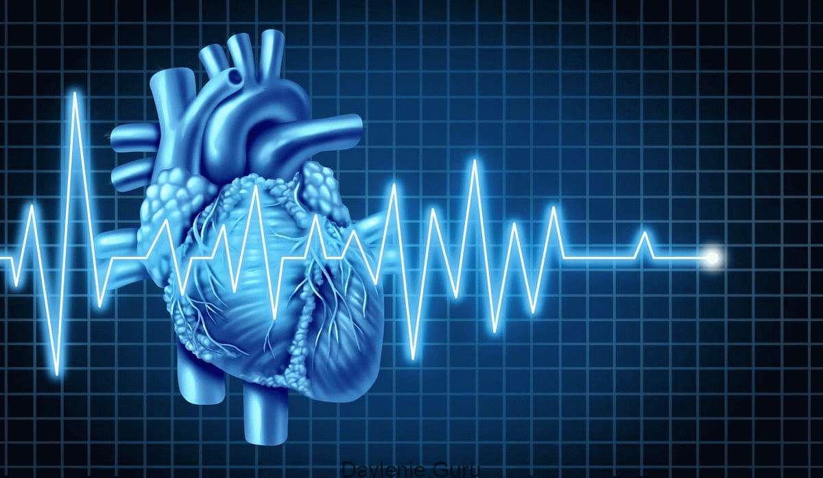 Картинки сердце и экг
