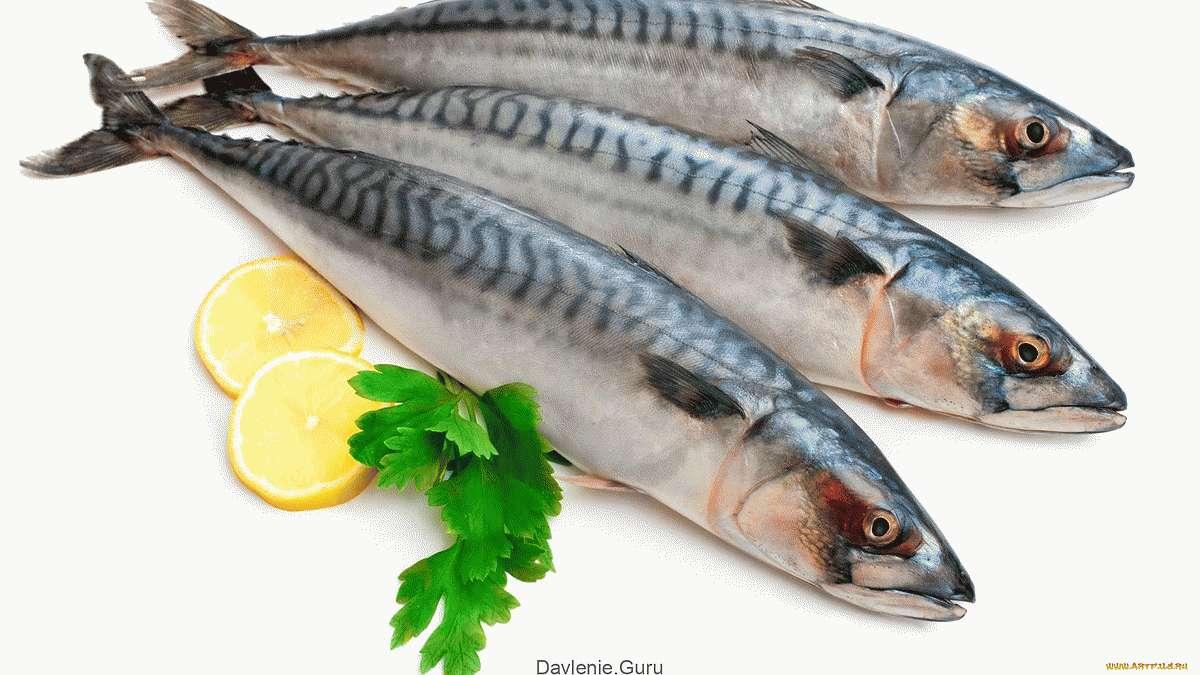 Какую рыбу можно употреблять при повышенном холестерине
