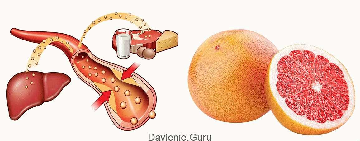 Грейпфрут и холестерин