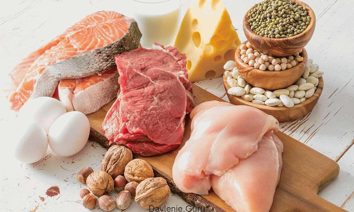 Белковая пища и растительные жиры