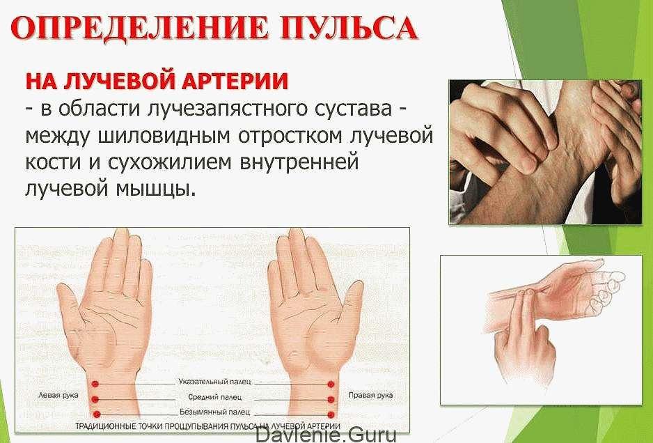 Определение пульса на лучевой артерии