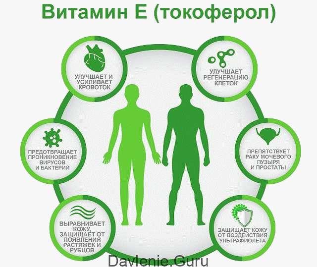 Действие витаминов E