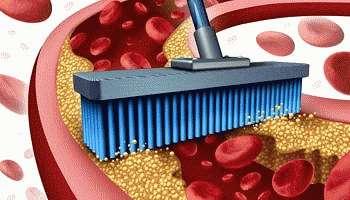 Как почистить сосуды от холестерина народными средствами: обзор проверенных способов