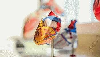 Сколько живут после инфаркта: статистика, прогнозы и коррекция