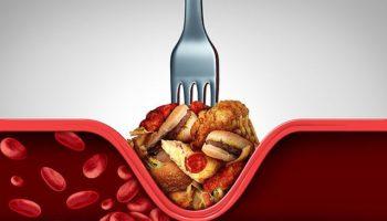 Основные причины почему повышается холестерин в крови